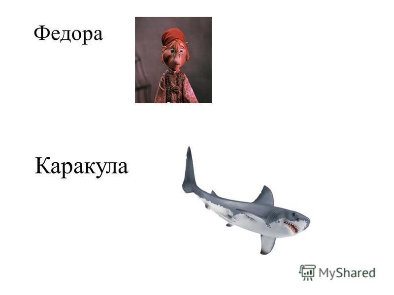Федора Каракула