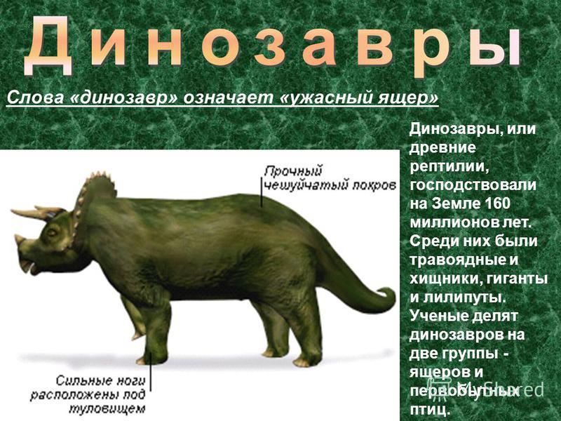 Динозавры, или древние рептилии, господствовали на Земле 160 миллионов лет. Среди них были травоядные и хищники, гиганты и лилипуты. Ученые делят динозавров на две группы - ящеров и первобытных птиц. Слова «динозавр» означает «ужасный ящер»