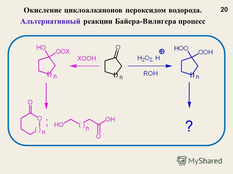 Окисление циклоалканов пероксидом водорода. Альтернативный реакции Байера-Вилигера процесс 20