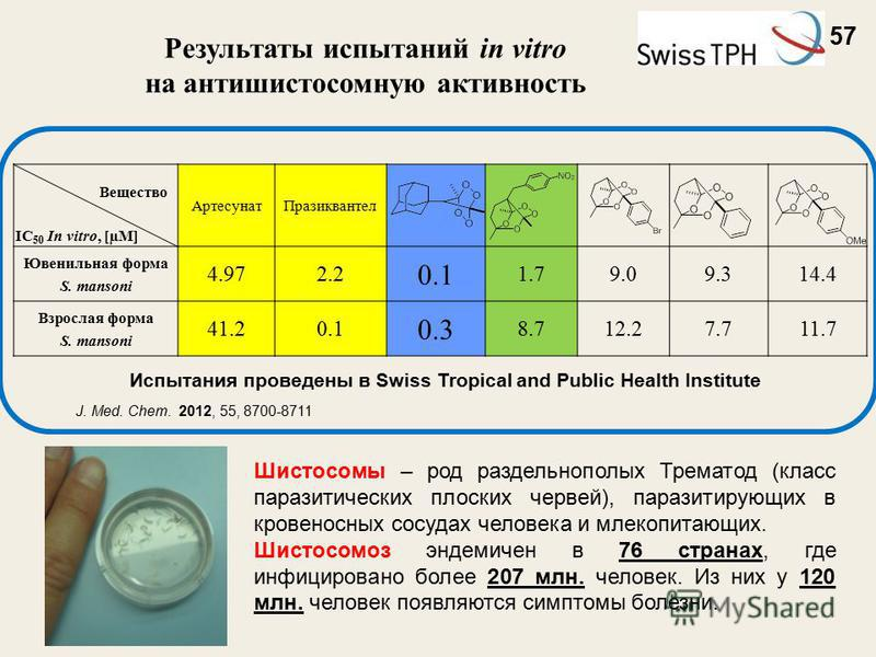 Артесунат Празиквантел Ювенильная форма S. mansoni 4.972.2 0.1 1.79.09.09.314.4 Взрослая форма S. mansoni 41.20.1 0.3 8.712.27.711.7 Вещество IC 50 In vitro, [µM] Результаты испытаний in vitro на антишистосомную активность Испытания проведены в Swiss