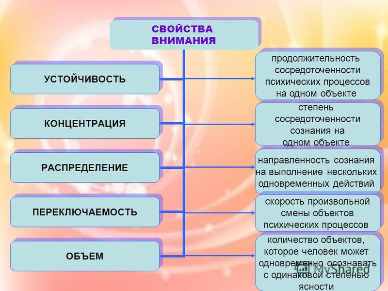 СВОЙСТВА ВНИМАНИЯ УСТОЙЧИВОСТЬ КОНЦЕНТРАЦИЯ РАСПРЕДЕЛЕНИЕ ПЕРЕКЛЮЧАЕМОСТЬ ОБЪЕМ продолжительность сосредоточенности психических процессов на одном объекте продолжительность сосредоточенности психических процессов на одном объекте степень сосредоточен
