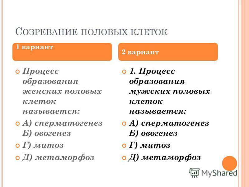 С ОЗРЕВАНИЕ ПОЛОВЫХ КЛЕТОК Процесс образования женских половых клеток называется: А) сперматогенез Б) овогенез Г) митоз Д) метаморфоз 1. Процесс образования мужских половых клеток называется: А) сперматогенез Б) овогенез Г) митоз Д) метаморфоз 1 вари