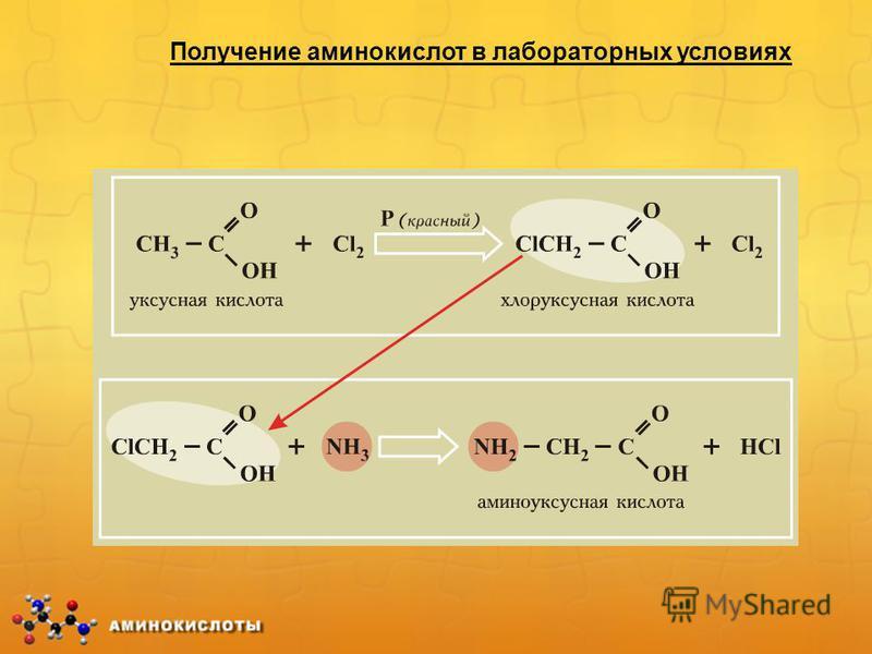 Получение аминокислот в лабораторных условиях