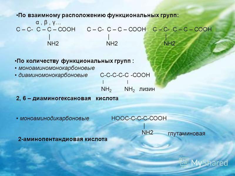 По количеству функциональных групп : моноаминомонокарбоновые диаминомонокарбоновые С-С-С-С-С -СООН ׀ NH 2 NH 2 лизин По взаимному расположению функциональных групп: α, β, γ… С – С- С – С – СООН С – С- С – С – СООН С – С- С – С – СООН | | | NH2 NH2 NH