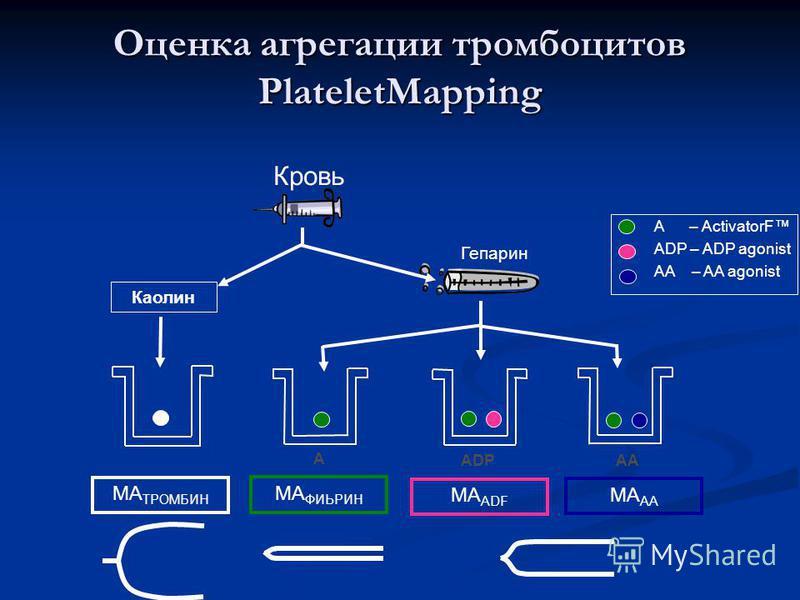 Оценка агрегации тромбоцитов PlateletMapping Гепарин Каолин MA ТРОМБИН MA ФИЬРИН MA ADF MA AA A – ActivatorF ADP – ADP agonist AA – AA agonist A ADP AA Кровь