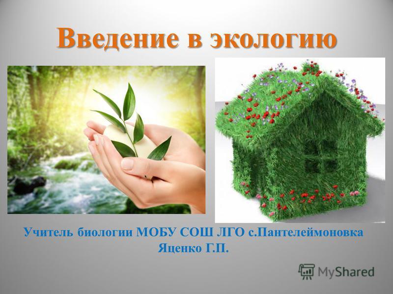 Введение в экологию Учитель биологии МОБУ СОШ ЛГО с.Пантелеймоновка Яценко Г.П.