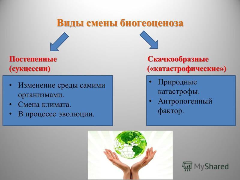 Виды смены биогеоценоза Постепенные Скачкообразные (сукцессии) («катастрофические») Изменение среды самими организмами. Смена климата. В процессе эволюции. Природные катастрофы. Антропогенный фактор.
