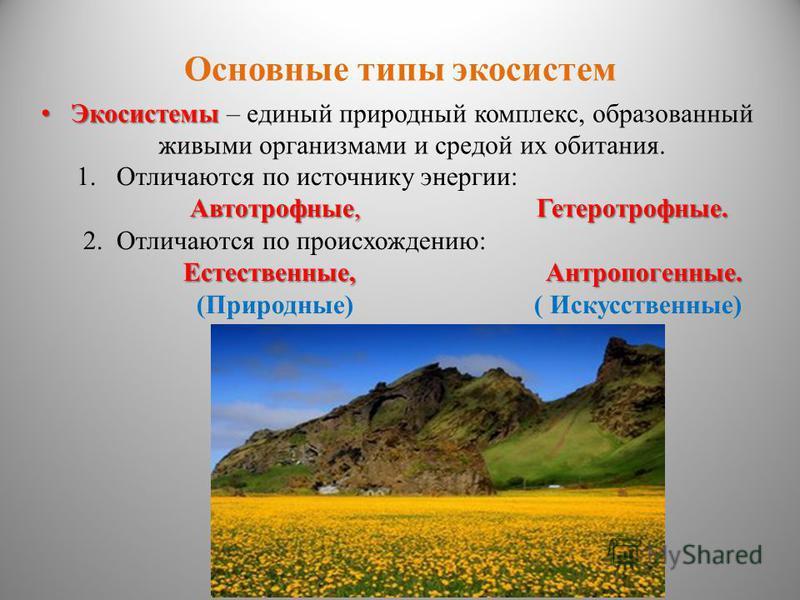 Основные типы экосистем Экосистемы Экосистемы – единый природный комплекс, образованный живыми организмами и средой их обитания. 1. Отличаются по источнику энергии: Автотрофные, Гетеротрофные. 2. Отличаются по происхождению: Естественные, Антропогенн
