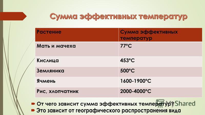 Растение Сумма эффективных температур Мать и мачеха 77ºC Кислица 453ºC Земляника 500ºC Ячмень 1600-1900ºC Рис, хлопчатник 2000-4000ºC