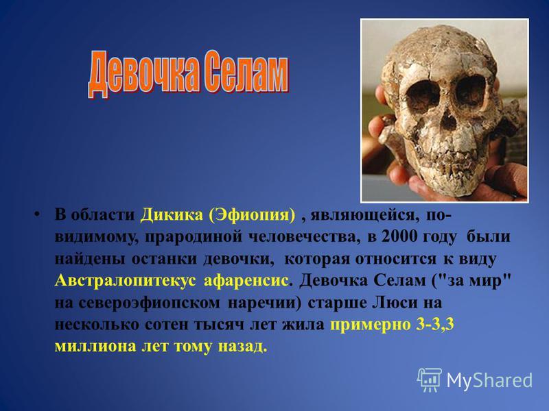 В области Дикика (Эфиопия), являющейся, по- видимому, прародиной человечества, в 2000 году были найдены останки девочки, которая относится к виду Австралопитекус афаренсис. Девочка Селам (