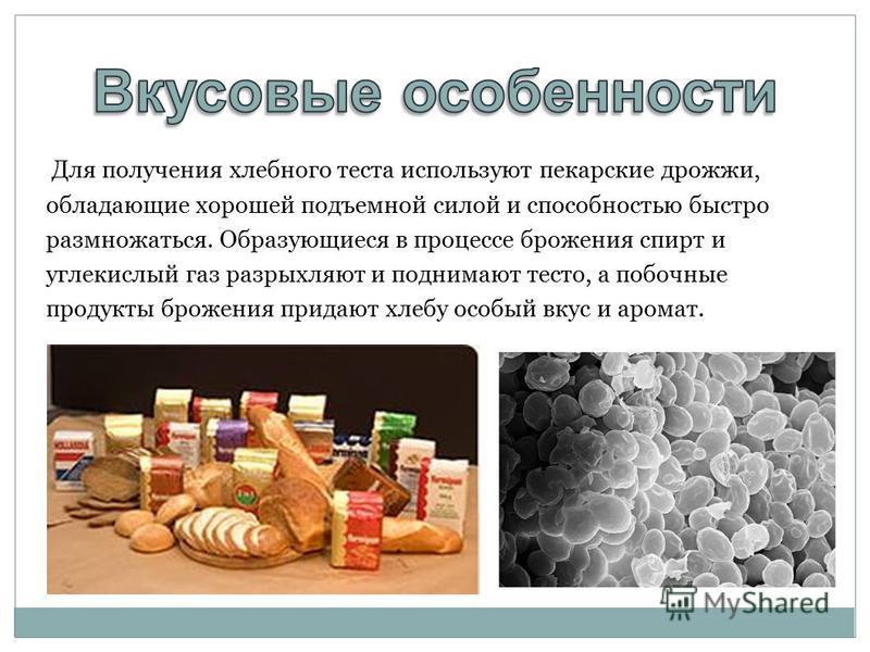 Для получения хлебного теста используют пекарские дрожжи, обладающие хорошей подъемной силой и способностью быстро размножаться. Образующиеся в процессе брожения спирт и углекислый газ разрыхляют и поднимают тесто, а побочные продукты брожения придаю