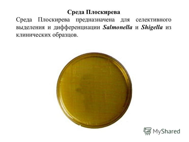 Среда Плоскирева Среда Плоскирева предназначена для селективного выделения и дифференциации Salmonella и Shigella из клинических образцов.