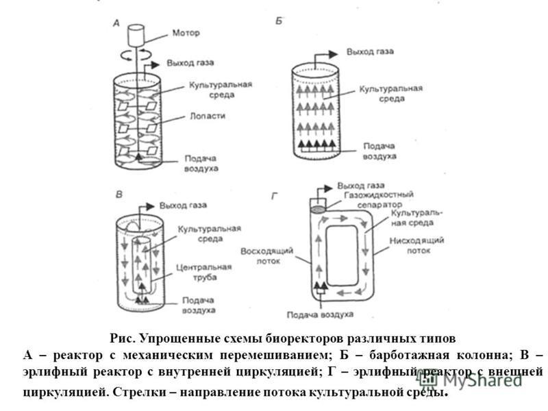 Рис. Упрощенные схемы биоректоров различных типов А – реактор с механическим перемешиванием; Б – барботажная колонна; В – эрлифный реактор с внутренней циркуляцией; Г – эрлифный реактор с внешней циркуляцией. Стрелки – направление потока культурально