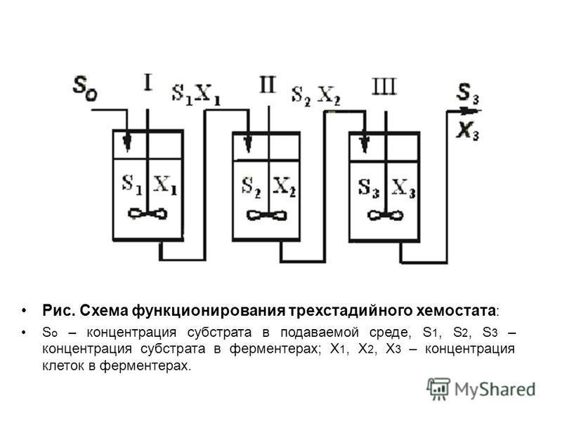 Рис. Схема функционирования трехстадийного хемостата : S o – концентрация субстрата в подаваемой среде, S 1, S 2, S 3 – концентрация субстрата в ферментерах; Х 1, Х 2, Х 3 – концентрация клеток в ферментерах.