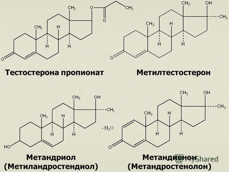 Тестостерона пропионат Метилтестостерон Метандриол (Метиландростендиол) Метандиенон (Метандростенолон)