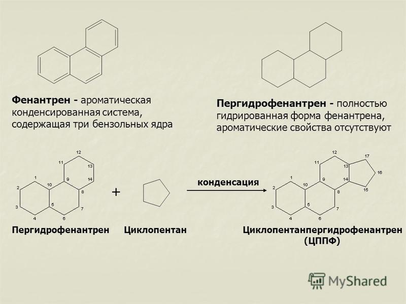 Фенантрен - ароматическая конденсированная система, содержащая три бензольных ядра Пергидрофенантрен - полностью гидрированная форма фенантрена, ароматические свойства отсутствуют Пергидрофенантрен Циклопентан + конденсация Циклопентанпергидрофенантр