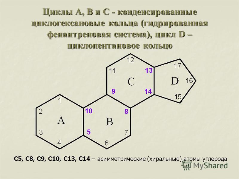 Циклы A, B и C - конденсированные циклогексановые кольца (гидрированная фенантреновая система), цикл D – циклопентан новое кольцо С5, С8, С9, С10, С13, С14 – асимметрические (хиральные) атомы углерода