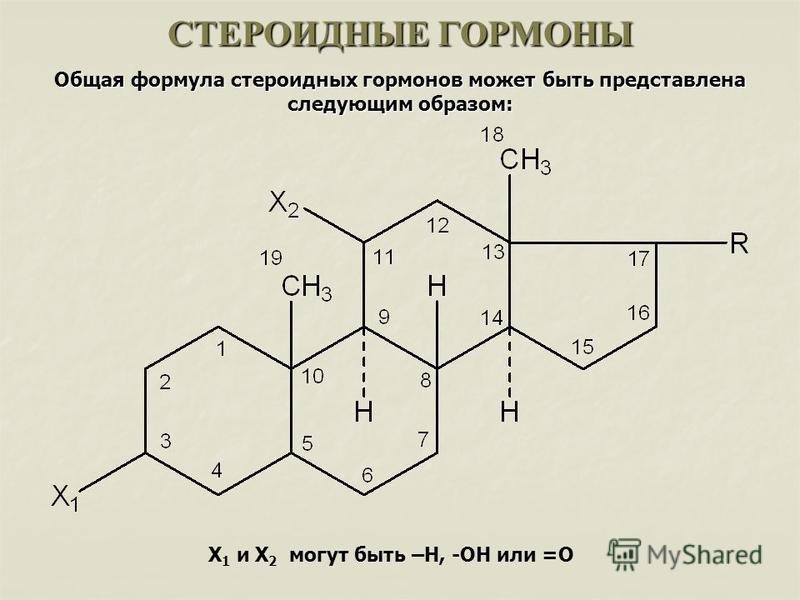 СТЕРОИДНЫЕ ГОРМОНЫ Общая формула стероидных гормонов может быть представлена следующим образом: X 1 и X 2 могут быть –Н, -ОН или =О