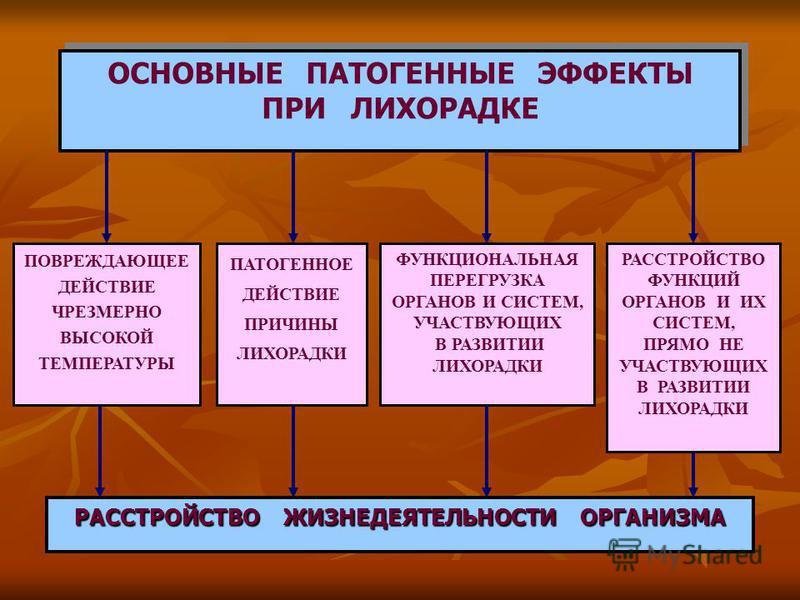 ОСНОВНЫЕ ПАТОГЕННЫЕ ЭФФЕКТЫ ПРИ ЛИХОРАДКЕ ОСНОВНЫЕ ПАТОГЕННЫЕ ЭФФЕКТЫ ПРИ ЛИХОРАДКЕ РАССТРОЙСТВО ЖИЗНЕДЕЯТЕЛЬНОСТИ ОРГАНИЗМА ПАТОГЕННОЕ ДЕЙСТВИЕ ПРИЧИНЫ ЛИХОРАДКИ ПОВРЕЖДАЮЩЕЕ ДЕЙСТВИЕ ЧРЕЗМЕРНО ВЫСОКОЙ ТЕМПЕРАТУРЫ РАССТРОЙСТВО ФУНКЦИЙ ОРГАНОВ И ИХ С