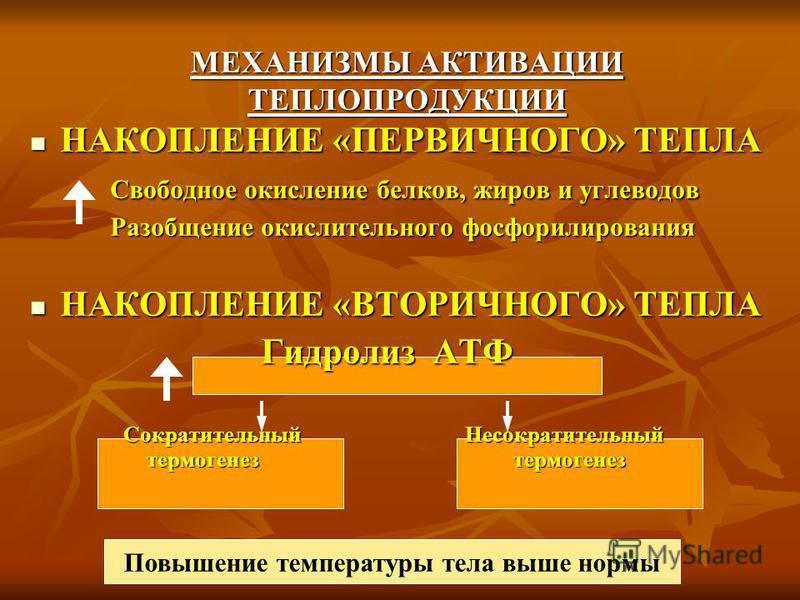 МЕХАНИЗМЫ АКТИВАЦИИ ТЕПЛОПРОДУКЦИИ НАКОПЛЕНИЕ «ПЕРВИЧНОГО» ТЕПЛА НАКОПЛЕНИЕ «ПЕРВИЧНОГО» ТЕПЛА Свободное окисление белков, жиров и углеводов Разобщение окислительного фосфорилирования НАКОПЛЕНИЕ «ВТОРИЧНОГО» ТЕПЛА НАКОПЛЕНИЕ «ВТОРИЧНОГО» ТЕПЛА Гидрол