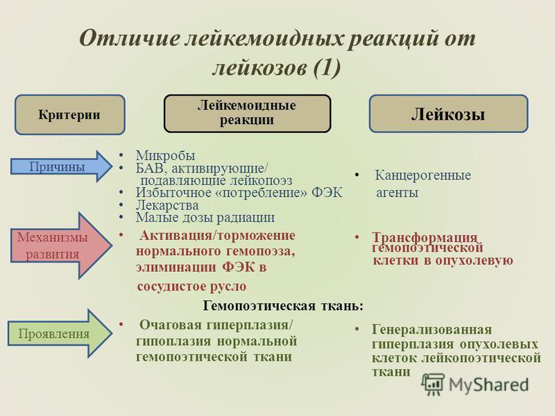 Отличие лейкемоидных реакций от лейказов (1) Лейкемоидные реакции Микробы БАВ, активирующие/ подавляющие лейкапоэз Избыточное «потребление» ФЭК Лекарства Малые дозы радиации Активация/торможение нормального гемопоэза, элиминации ФЭК в сосудистое русл