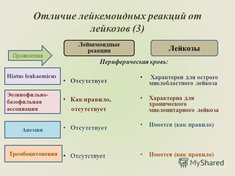 Отличие лейкемоидных реакций от лейказов (3) Лейкемоидные реакции Периферическая кровь: Отсутствует Как правило, отсутствует Отсутствует Лейкозы Характерен для острого миелобластного лейказа Характерна для хронического промиелоцитарного лейказа Имеет