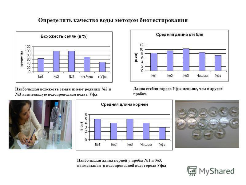 Определить качество воды методом биотестирования Наибольшая всхожесть семян имеют родники 2 и 3 наименьшую водопроводная вода г. Уфа Длина стебля города Уфы меньше, чем в других пробах. Наибольшая длина корней у пробы 1 и 3, наименьшая в водопроводно