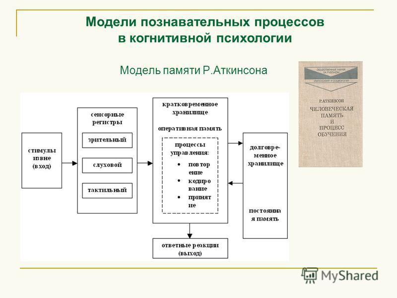 Модель памяти Р.Аткинсона Модели познавательных процессов в когнитивной психологии