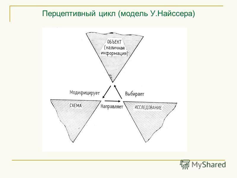 Перцептивный цикл (модель У.Найссера)