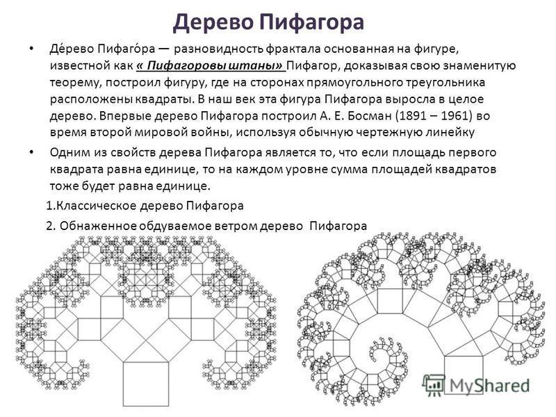 Деревo Пифагoра Де́рево Пифаго́ра разновидность фрактала основанная на фигуре, известной как « Пифагоровы штаны» Пифагор, доказывая свою знаменитую теорему, построил фигуру, где на сторонах прямоугольного треугольника расположены квадраты. В наш век