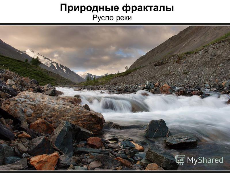 Природные фракталы Русло реки
