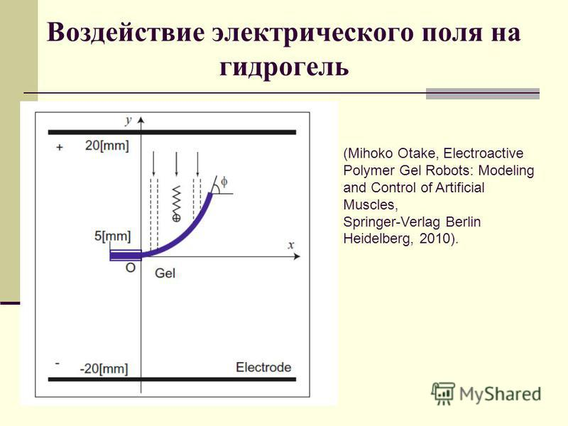 Воздействие электрического поля на гидрогель (Mihoko Otake, Electroactive Polymer Gel Robots: Modeling and Control of Artificial Muscles, Springer-Verlag Berlin Heidelberg, 2010).