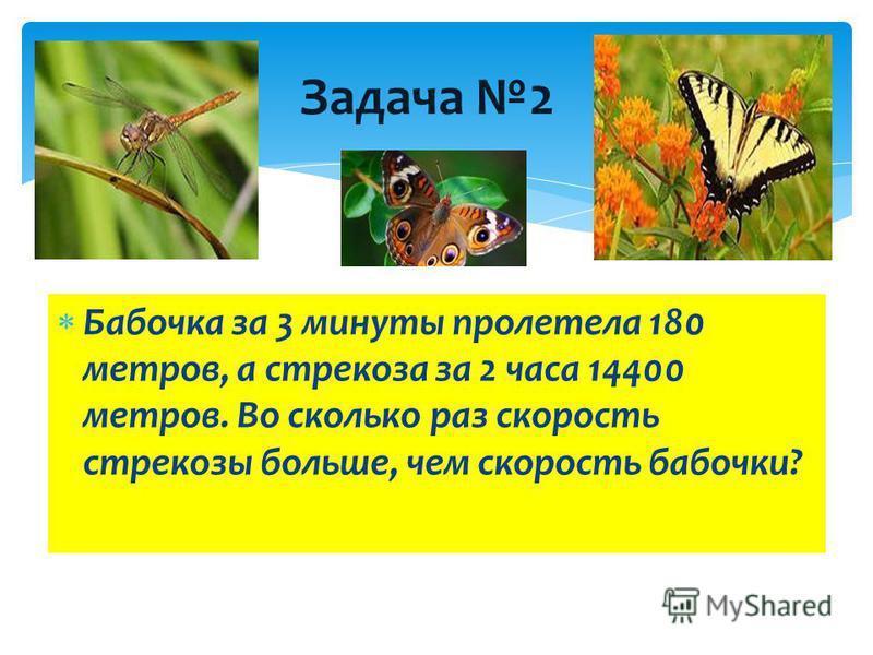 Задача 2 Бабочка за 3 минуты пролетела 180 метров, а стрекоза за 2 часа 14400 метров. Во сколько раз скорость стрекозы больше, чем скорость бабочки?