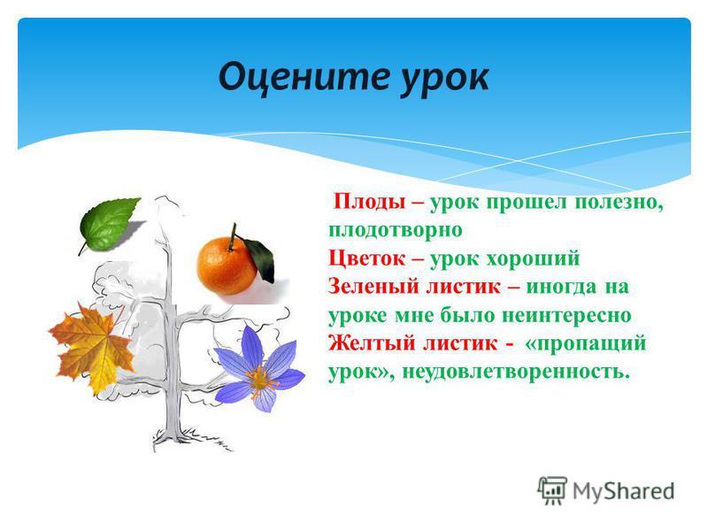 Оцените урок Плоды – урок прошел полезно, плодотворно Цветок – урок хороший Зеленый листик – иногда на уроке мне было неинтересно Желтый листик - «пропащий урок», неудовлетворенность.