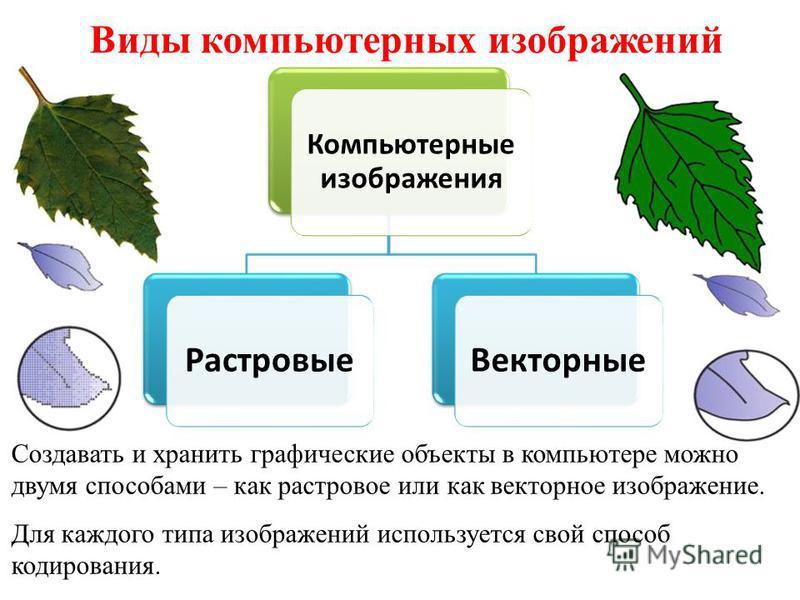 Виды компьютерных изображений Создавать и хранить графические объекты в компьютере можно двумя способами – как растровое или как векторное изображение. Для каждого типа изображений используется свой способ кодирования. Компьютерные изображения Растро