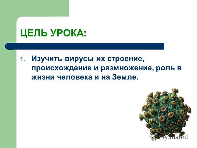 ЦЕЛЬ УРОКА: 1. Изучить вирусы их строение, происхождение и размножение, роль в жизни человека и на Земле.
