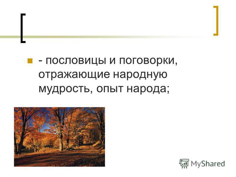 - пословицы и поговорки, отражающие народную мудрость, опыт народа;