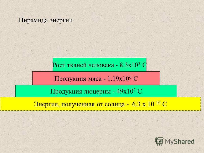 Пирамида энергии Энергия, полученная от солнца - 6.3 x 10 10 C Продукция люцерны - 49x10 7 C Продукция мяса - 1.19x10 6 C Рост тканей человека - 8.3x10 3 C