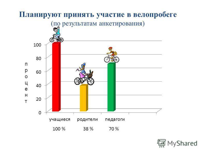 Планируют принять участие в велопробеге (по результатам анкетирования) процент 100 % 38 % 70 %