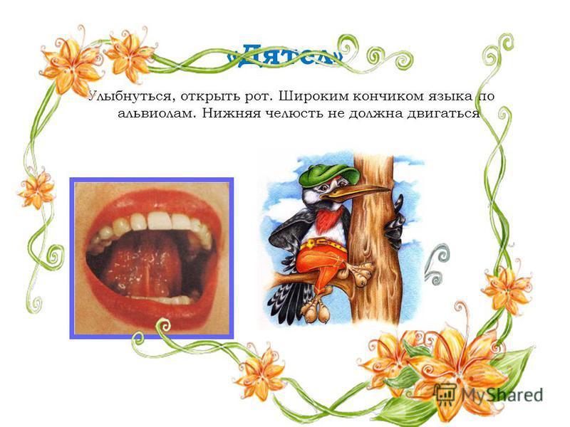« Дятел» Улыбнуться, открыть рот. Широким кончиком языка по альвеолам. Нижняя челюсть не должна двигаться.