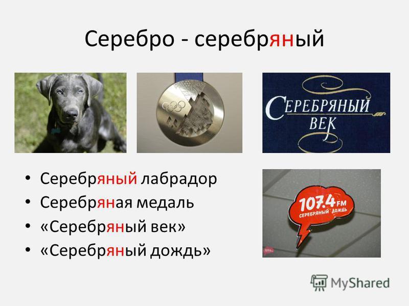 Серебро - серебряный Серебряный лабрадор Серебряная медаль «Серебряный век» «Серебряный дождь»