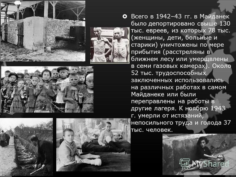 Всего в 1942–43 гг. в Майданек было депортировано свыше 130 тыс. евреев, из которых 78 тыс. (женщины, дети, больные и старики) уничтожены по мере прибытия (расстреляны в ближнем лесу или умерщвлены в семи газовых камерах). Около 52 тыс. трудоспособны