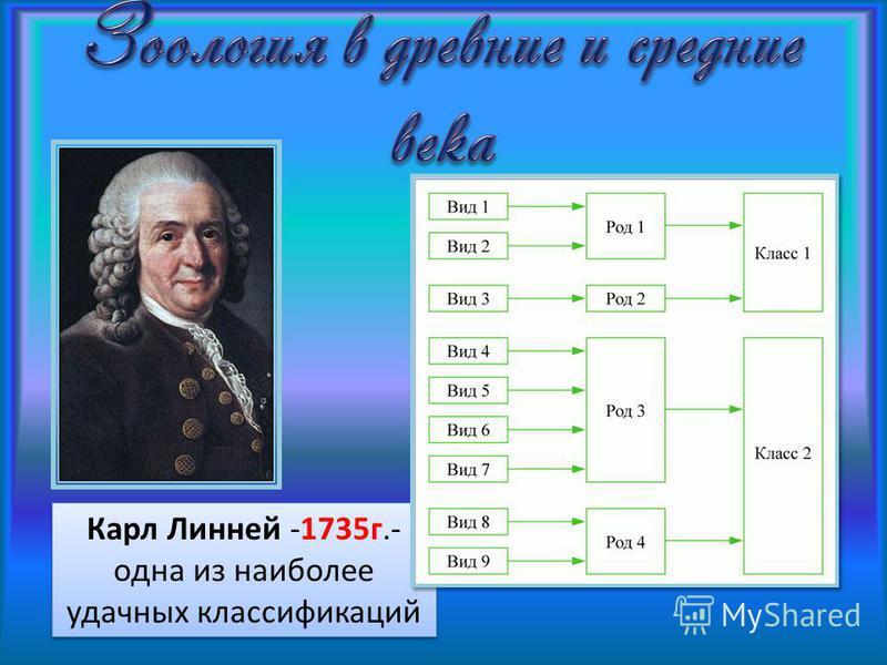 Карл Линней -1735 г.- одна из наиболее удачных классификаций