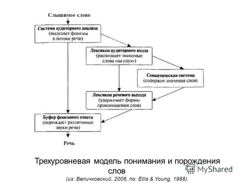 Трехуровневая модель понимания и порождения слов (из: Величковский, 2006, по: Ellis & Young, 1988). Слышимое слово Речь
