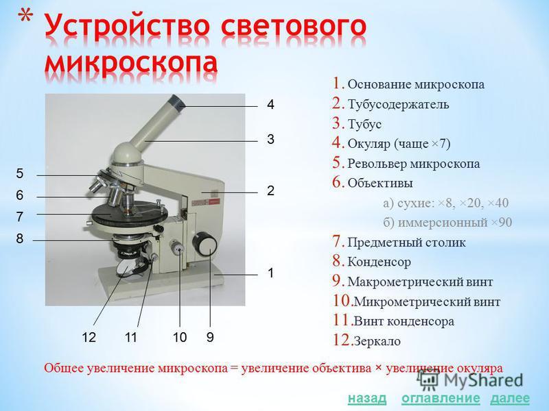 Электронная Темно- польная Поляриза- ционная Фазово- контраст- ная Флюоресцентная (люминесцентная) Световая Оптическая Просвечивающая Просвечивающая (трансмиссионная) Сканирующая Сканирующая (растровая)