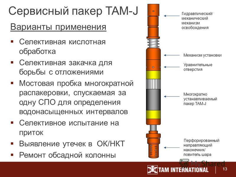 13 Сервисный пакер TAM-J Селективная кислотная обработка Селективная закачка для борьбы с отложениями Мостовая пробка многократной распакеровки, спускаемая за одну СПО для определения водонасыщенных интервалов Селективное испытание на приток Выявлени