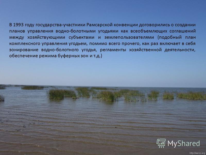 В 1993 году государства-участники Рамсарской конвенции договорились о создании планов управления водно-болотными угодьями как всеобъемлющих соглашений между хозяйствующими субъектами и землепользователями (подобный план комплексного управления угодье