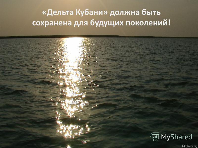 «Дельта Кубани» должна быть сохранена для будущих поколений!