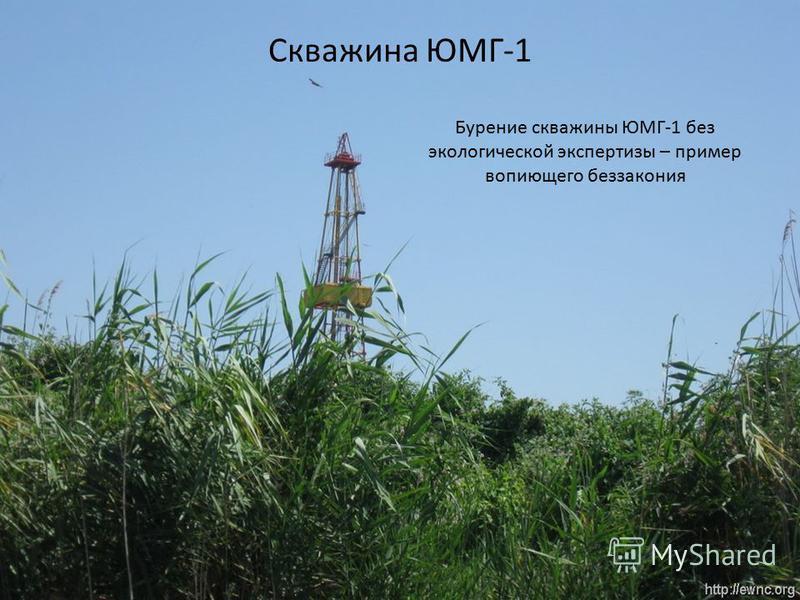 Скважина ЮМГ-1 Бурение скважины ЮМГ-1 без экологической экспертизы – пример вопиющего беззакония