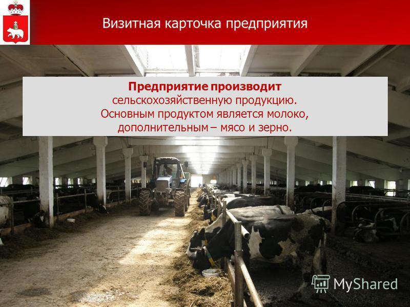 Предприятие производит сельскохозяйственную продукцию. Основным продуктом является молоко, дополнительным – мясо и зерно. Визитная карточка предприятия